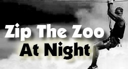 zipthezoonight